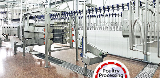 poultry defeathering line